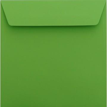 1 Briefumschlag 17 x 17 cm 170 x 170 mm Gras Grün Verschluss: Kuverts mit Haftstreifen