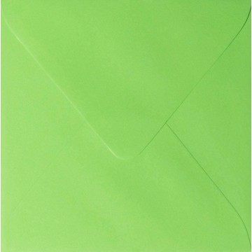 1 Briefumschlag 15 x 15 cm 150 x 150 mm Hell Grün Verschluss: fruchtklebend Grammatur: 120 g/m²