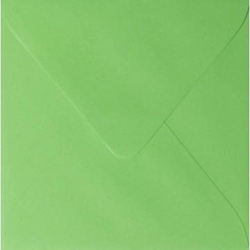 1 Briefumschlag 15,5 x 15,5 cm 155 x 155 mm Gras Grün Verschluss: feuchtklebend